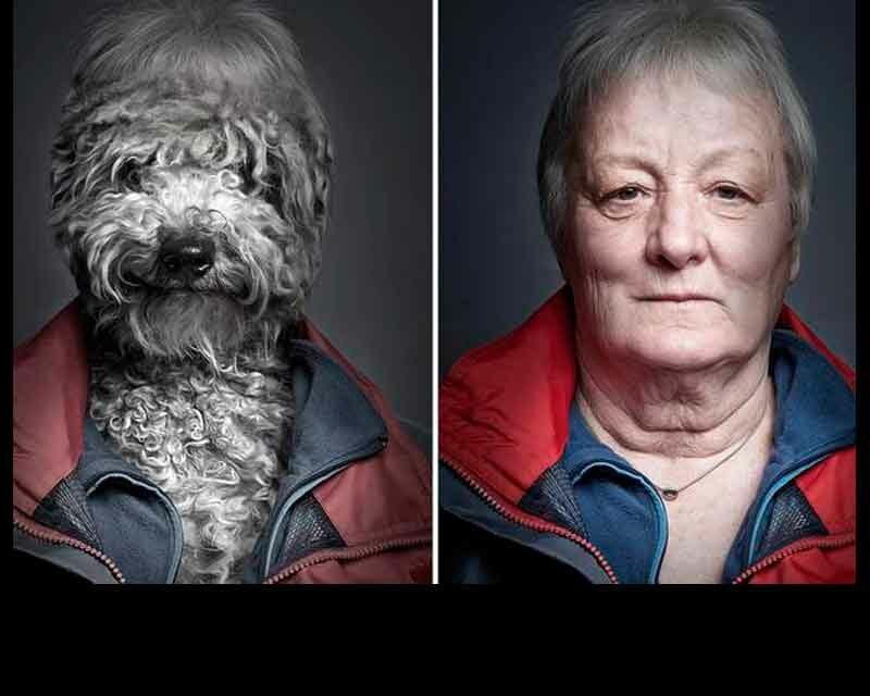 Los perros SÍ se parecen a sus dueños
