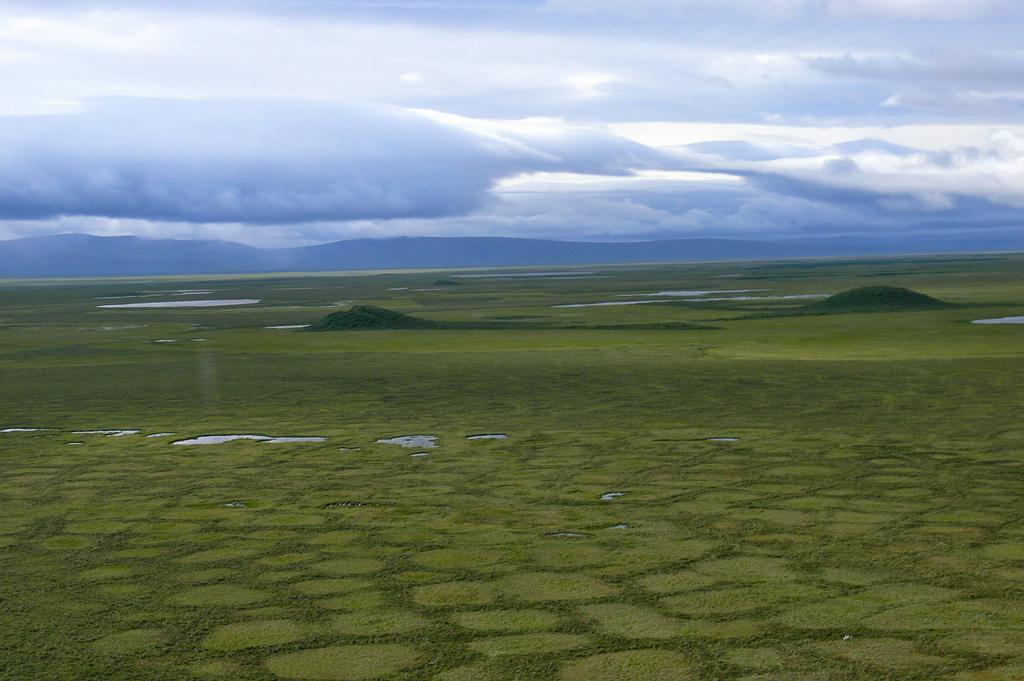 Los virus congelados en el permafrost se están escapando