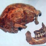 Los neandertales hallados