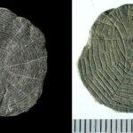 Nadie sabe aún para qué servían estos discos de piedra de hace 5.000 años