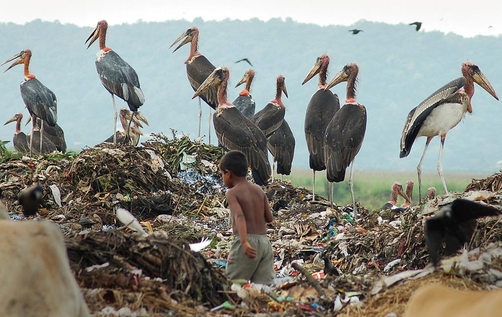 Bjørn Lomborg, 'El ecologista escéptico'