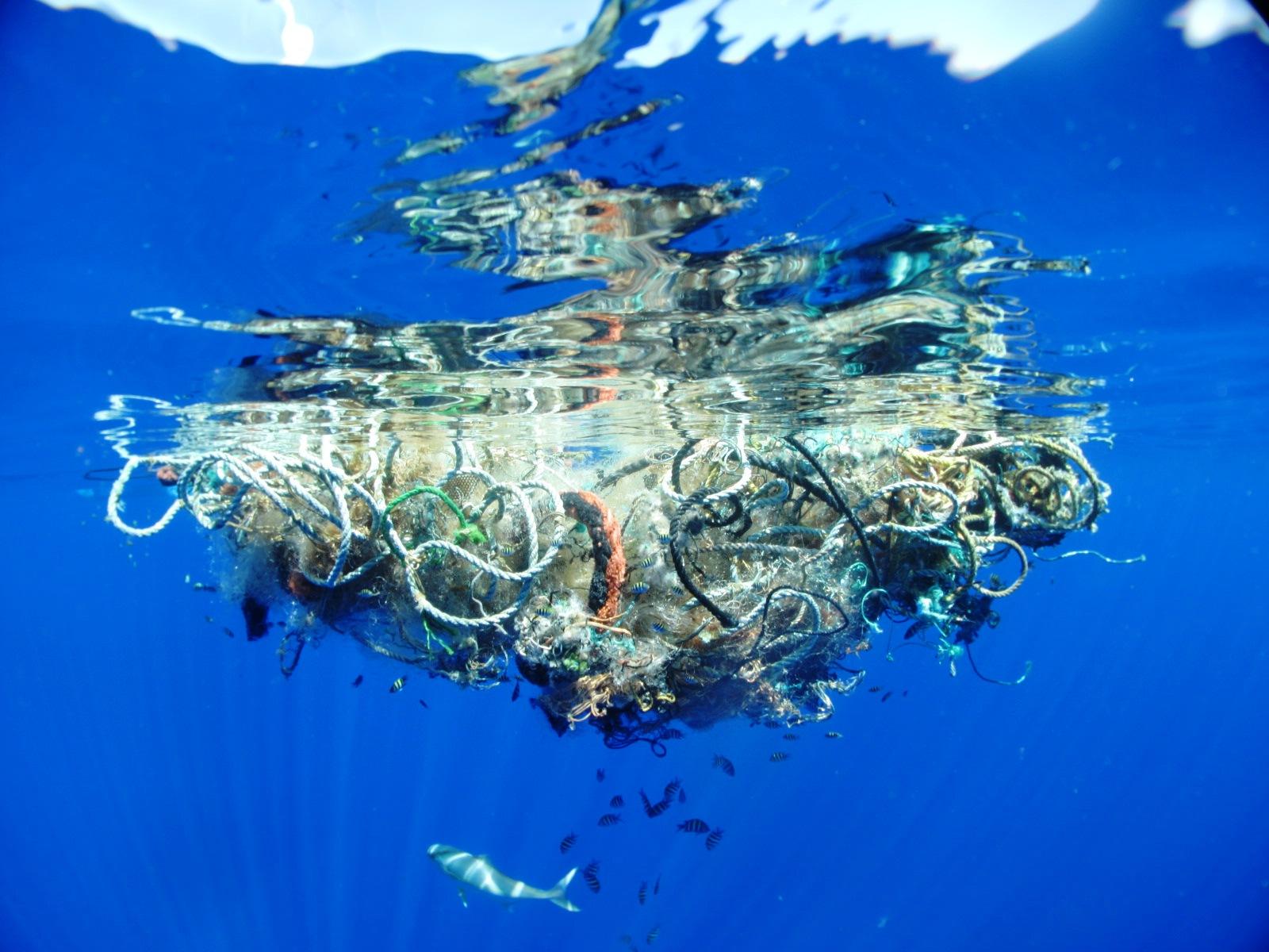 Para limpiar los océanos, la clave son las costas