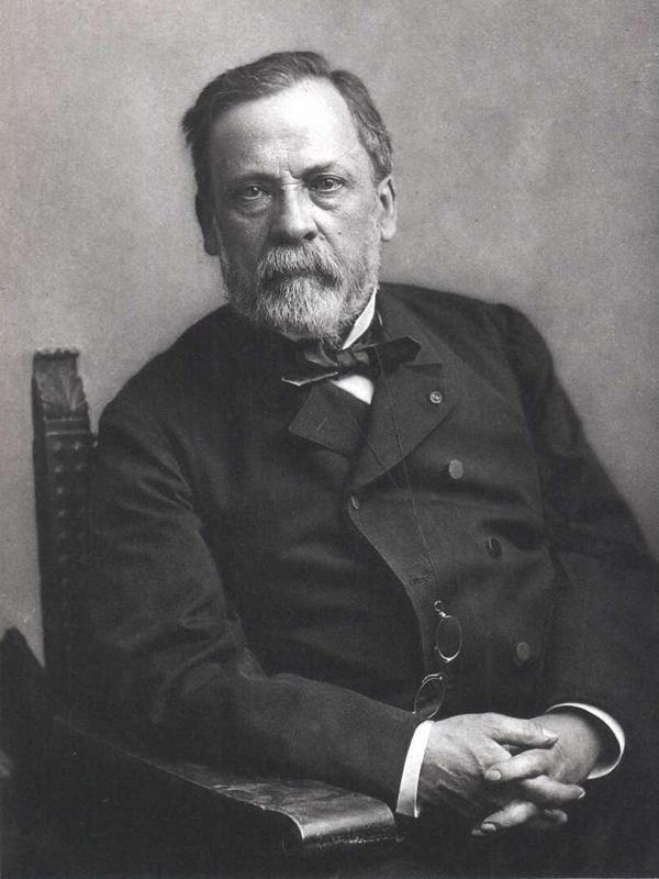 Pasteur y el alcohol