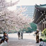 Pequeña guía Quo para conversar en japonés