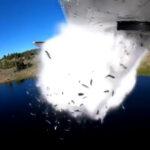 ¿Por qué están arrojando peces desde un avión en Utah?