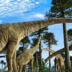 ¿Por qué los últimos titanosaurios ponían huevos deformes?