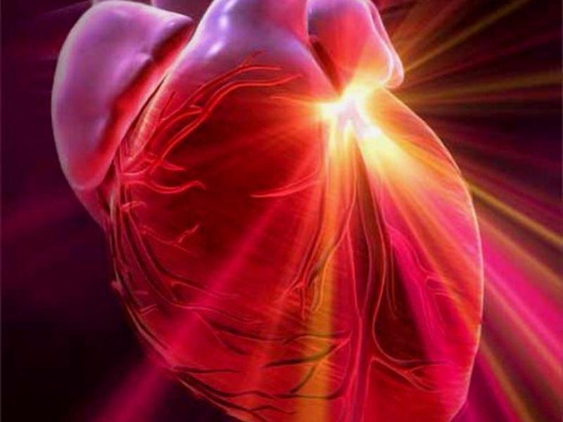 ¿Por qué nos late el corazón?