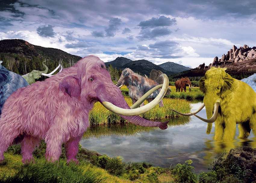 Por qué mamíferos gigantes