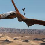 Presentan una nueva bestia prehistórica: un pterosaurio gigante