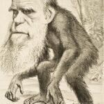 Reirse de Darwin