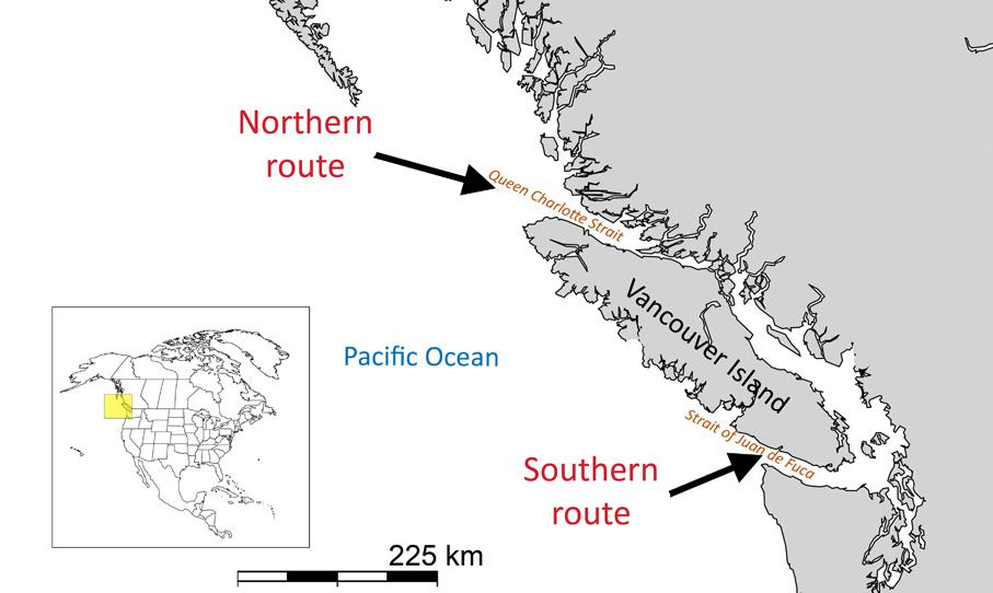 Salmones con GPS natural