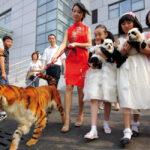 ¿Se disfrazan los animales?