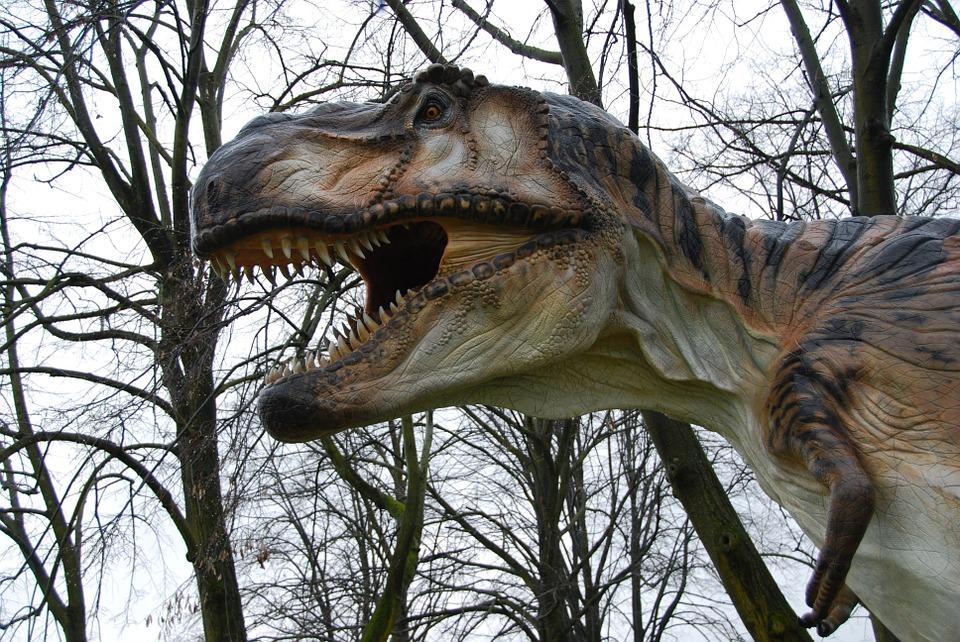 ¿Se hubiera extinguido el T. rex de haber tenido pico? Quizás no.