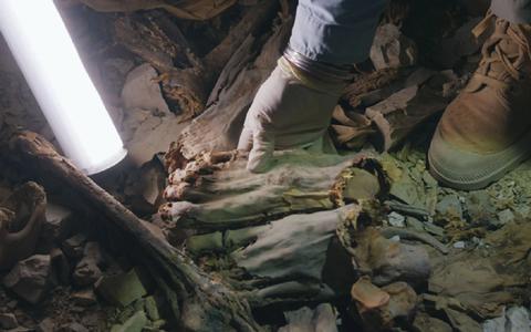 Descubren 60 momias enterradas en una fosa común que murieron de forma macabra