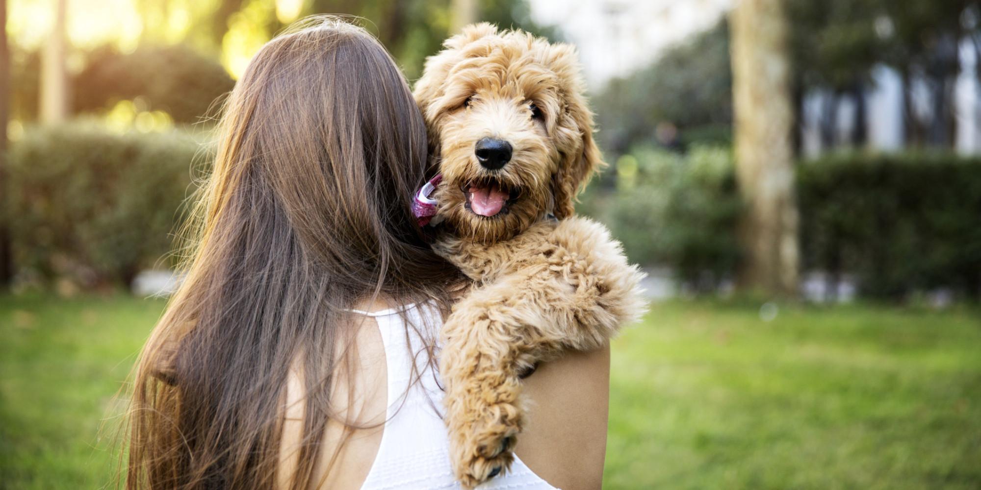 Si hablas con tu perro no estás loco… es bueno