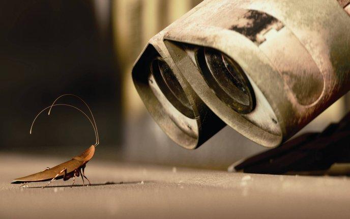 ¿Sobrevivirían las cucarachas a un holocausto nuclear?