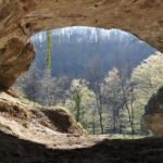 ¿Somos más neandertales que antes?