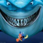 Tiburones: ¿Solitarios o extravertidos?