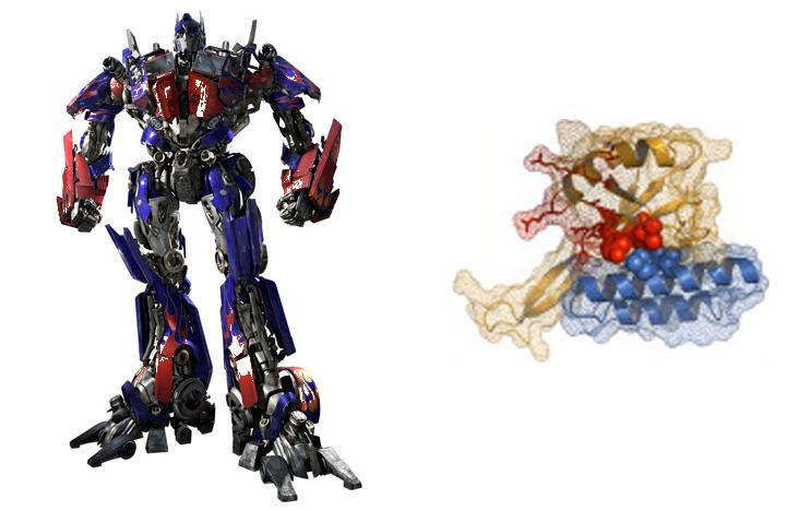 Transformers en tu cuerpo