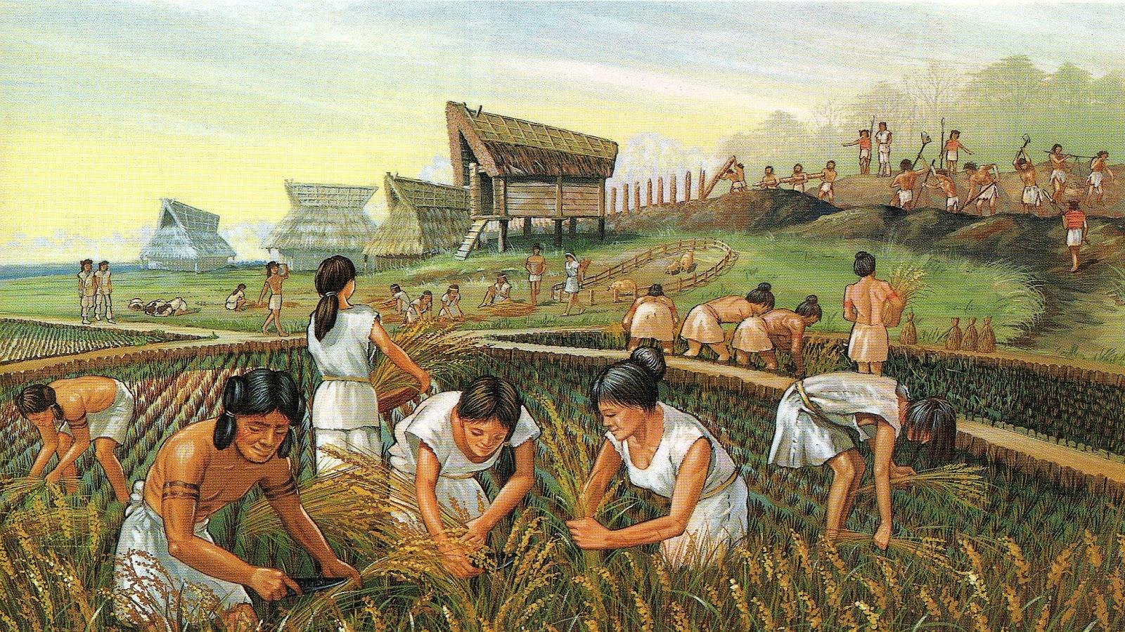 Un grupo de esqueletos aporta claves sobre el origen de la agricultura