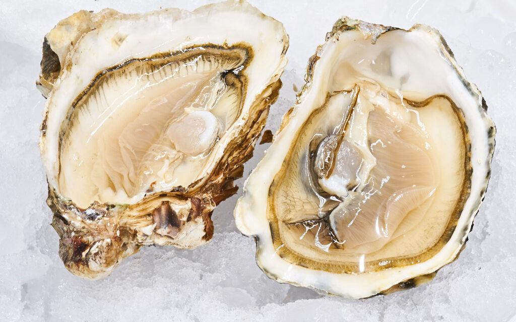 Un hombre muere por la bacteria comecarne tras comer ostras crudas