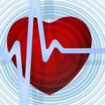 Un tercio de las muertes se deben a enfermedades cardiovasculares
