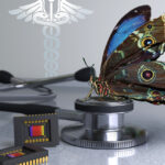 Una cámara inspirada en los ojos de la mariposa