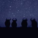 Una noche salvaje