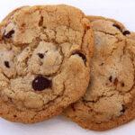 Unas deliciosas cookies arruinaron la tesis de un experimento científico