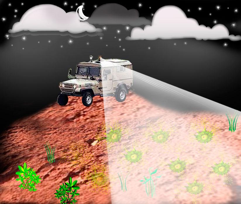 Usan bacterias para detectar minas enterradas