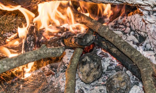 Nuestros ancestros del Paleolítico comían raíces asadas