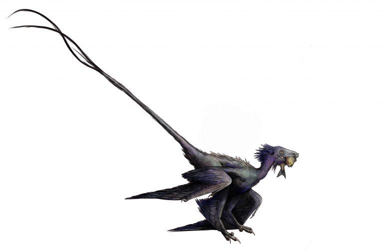 Wulong dinosaurio china