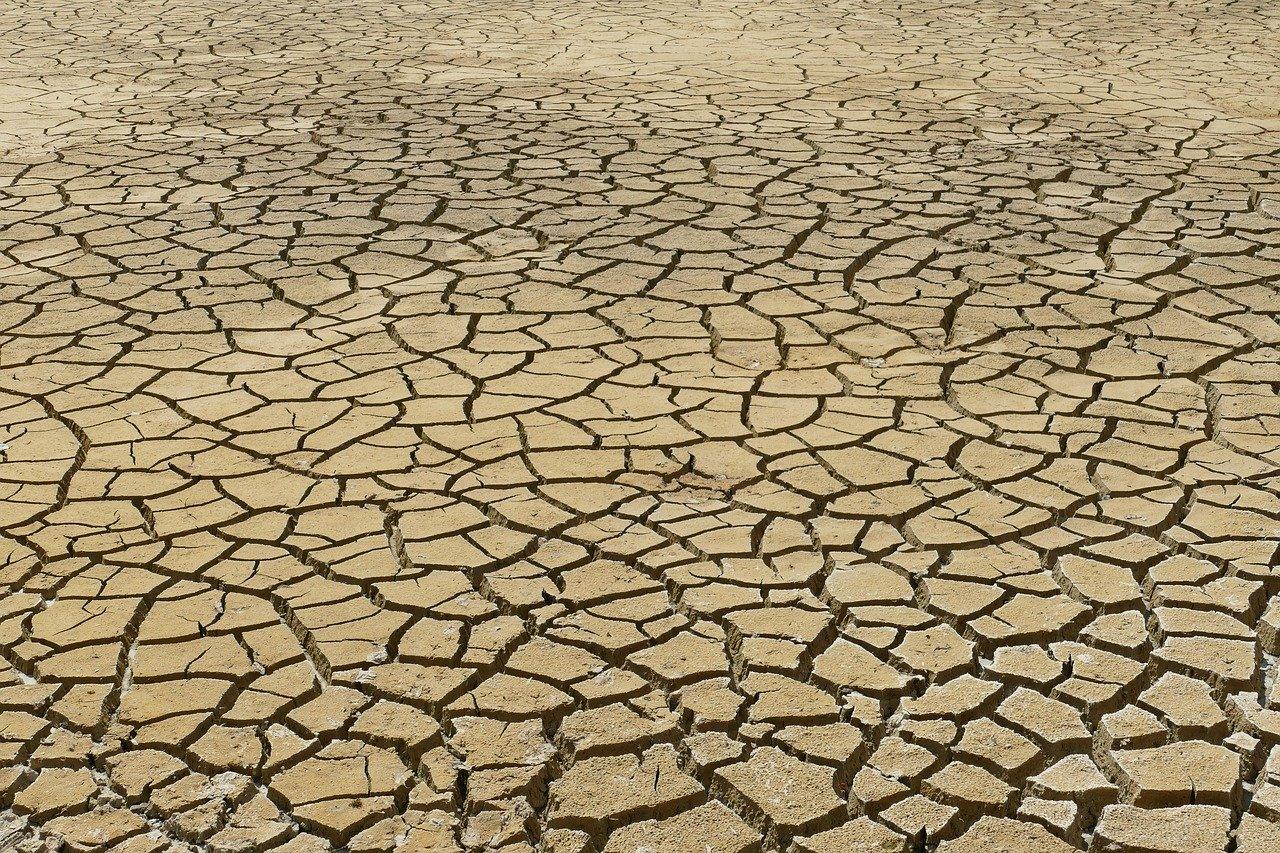 Ese 3% de estudios que niegan el cambio climático tiene graves errores