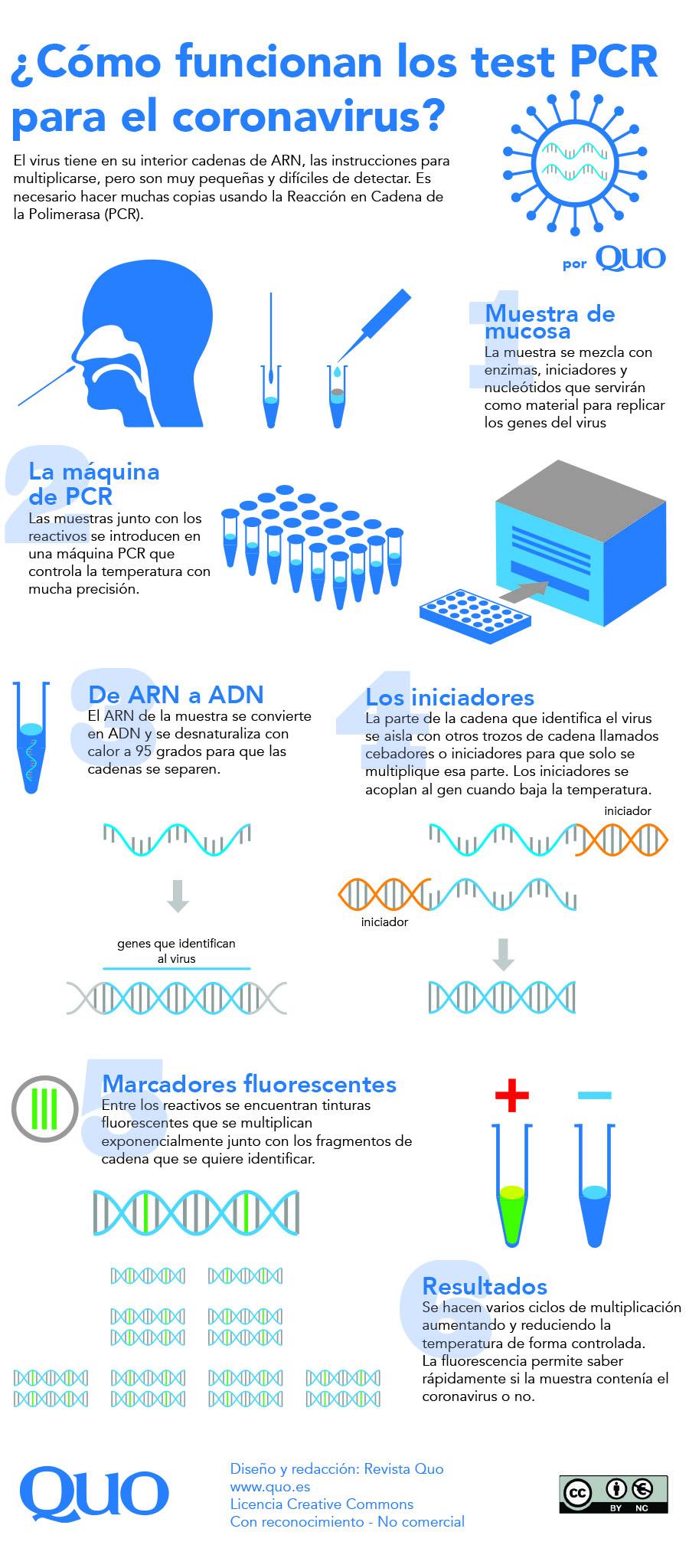 cómo funciona test PCR coronavirus