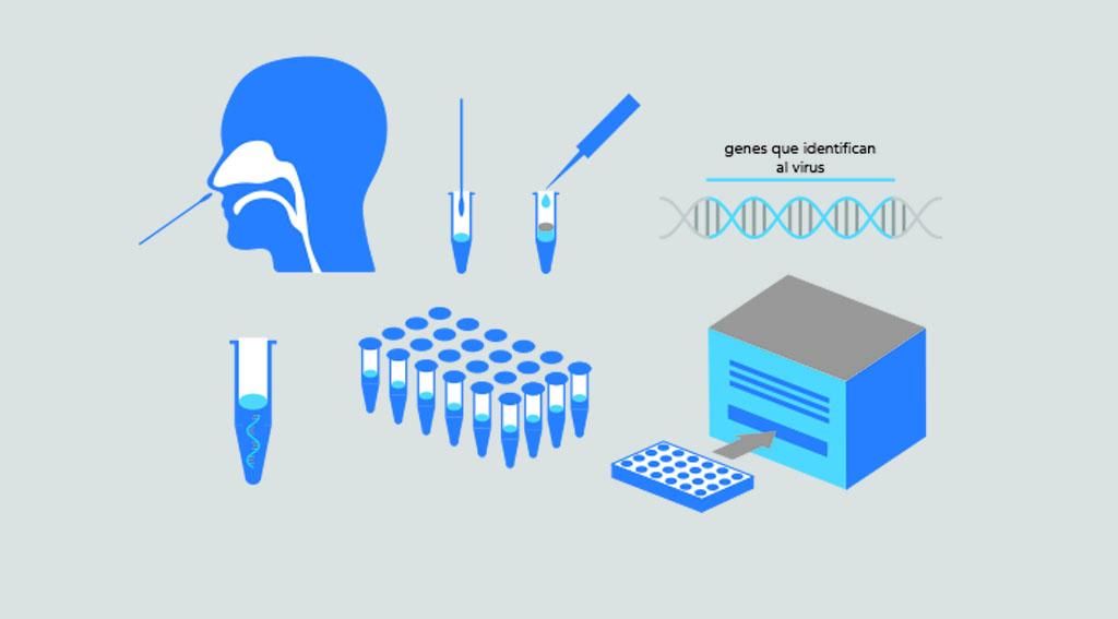 Cómo funcionan los test PCR del coronavirus (infografia)
