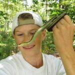 Las serpientes hacen amigos