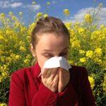 El cambio climático empeorará la alergia al polen