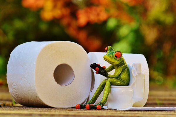 ¿Quién consume más papel higiénico en el mundo? Preguntas Curiosas QUO