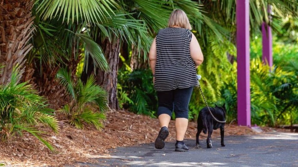 ¿Es igual la obesidad humana que la canina?