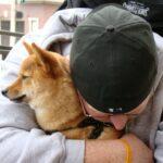 ¿Ayuda tener una mascota contra el coronavirus?