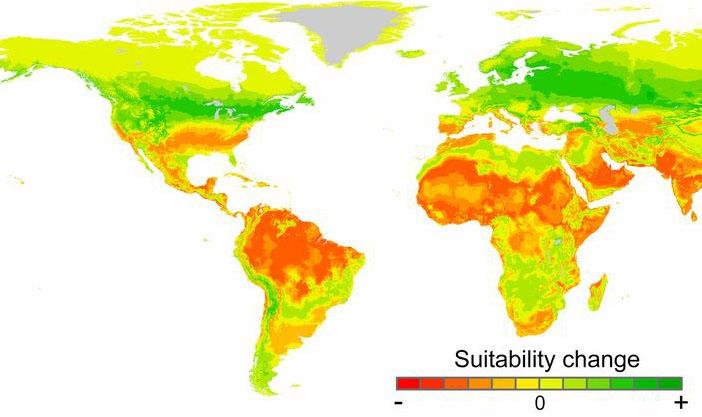En 2070 miles de millones de personas vivirán con temperaturas similares a las del Sáhara