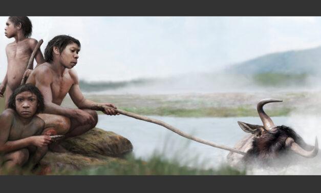 Prehistoria humana: hirvieron su comida en aguas termales antes de dominar el fuego