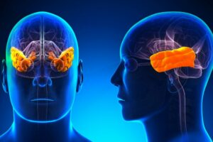 demencia relación audición