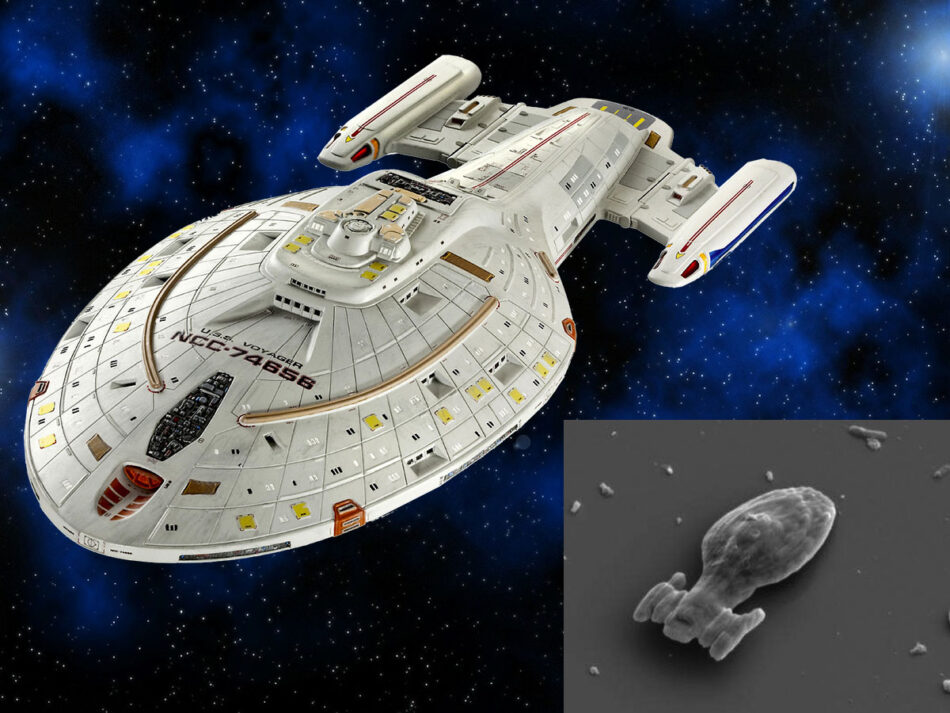 La nave USS Voyager de Star Trek a escala microscópica