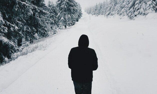 ¿Por qué todo está silencioso cuando nieva?