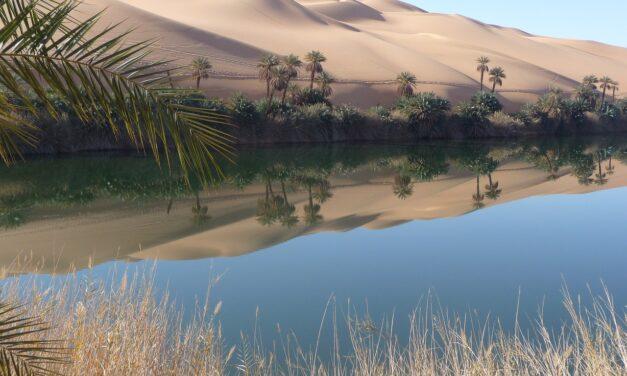 El desierto del Sahara fue verde y húmedo durante periodos de 5.000 años