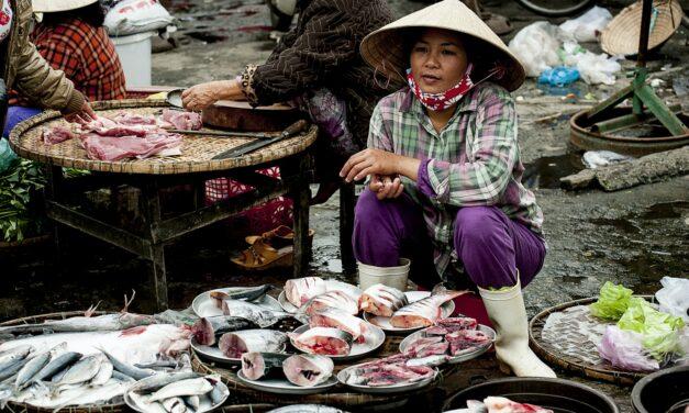 Cómo combatir el hambre mundial fomentando la pesca sostenible