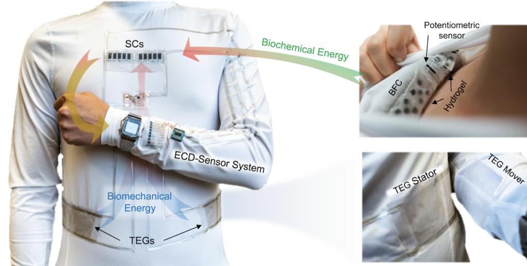 sistema de tejido microred